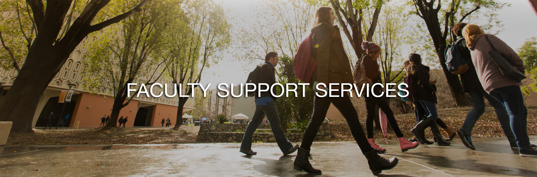 Faculty Support Services