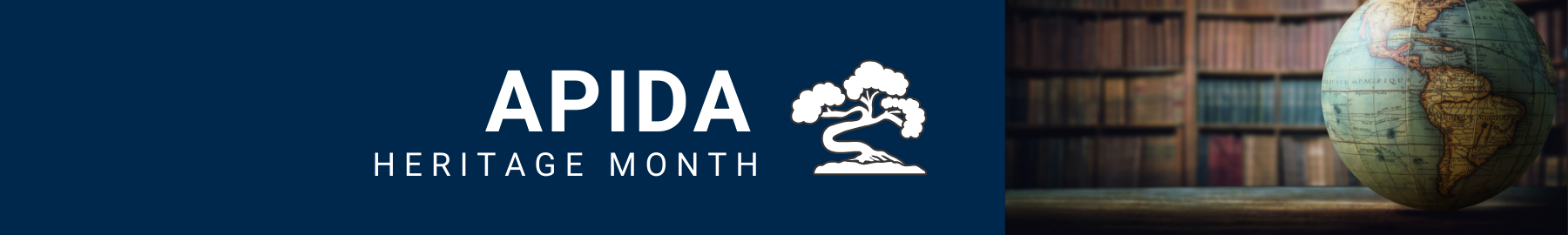 APIDA Heritage Month banner